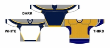 CCM Uncrested Nashville Hockey Jersey