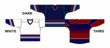 CCM Uncrested Vancouver Hockey Jersey