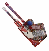 Detroit Red Wings Breakaway Mini Stick Set