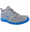 Reebok RealFlex Scream 2.0 Men's Training Shoes - Gray/Blue