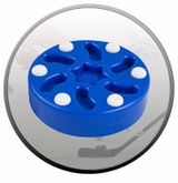 Roller Hockey Pucks