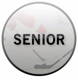 Senior Clearance Hockey Sticks