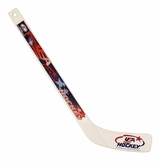 USA Hockey Plastic Mini Hockey Stick
