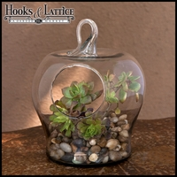"10"" Apple Shaped Terrarium"