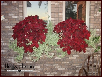 10 Great Ways to Decorate Your Window Boxes for the Holidays