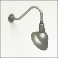 10in. Emblem Gooseneck Outdoor Light - 5 Mounting Options