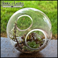"12"" Crosswinds Terrarium Vase"