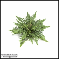 "14"" Tree Fern - Green 