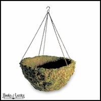 16in. Windsor Woodlands Moss Hanging Basket