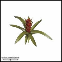 15in. Guzmania - Red/Green|Indoor - NFR