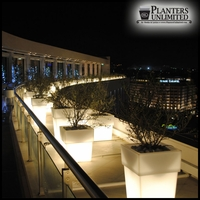 "15""L x 15""W x 28""H Messina Tapered Illuminated Planter"