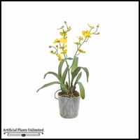 "16"" Dancing Orchid - Yellow 