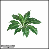 "18"" Birds Nest Fern - Green 