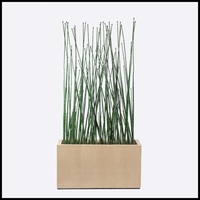 4'L Horsetail Grove in Modern Planter, Outdoor