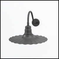 18in. Radial Gooseneck Decorative Light - Choose from 5 Gooseneck Arms