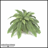 "21"" Boston Fern Cluster - Green 