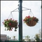 """22"""" English Garden Flat Steel Hanging Basket with Coco Liner and Chain"""