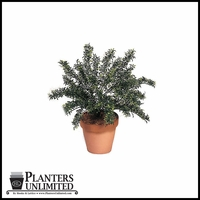 24in. Outdoor Rated Artificial Polycaise