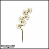 25in. White Cymbidium Orchid Spray