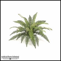"29""  Fishtail Fern - Green 