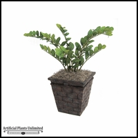 "30"" Nat Touch Zamia Plant - Green 