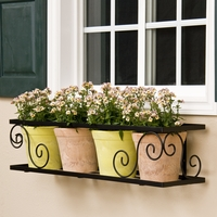 "30"" Scroll Window Box Cage"