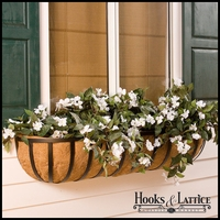 "30"" XL  Standard Window Box w/  XL Coir Liner"