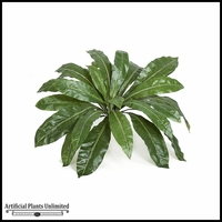 "33"" Birds Nest Fern - Green 