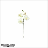 "33"" Phalaenopsis Spray - White 