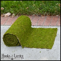 36in. Wide Preserved Moss Roll - Choose Your Length