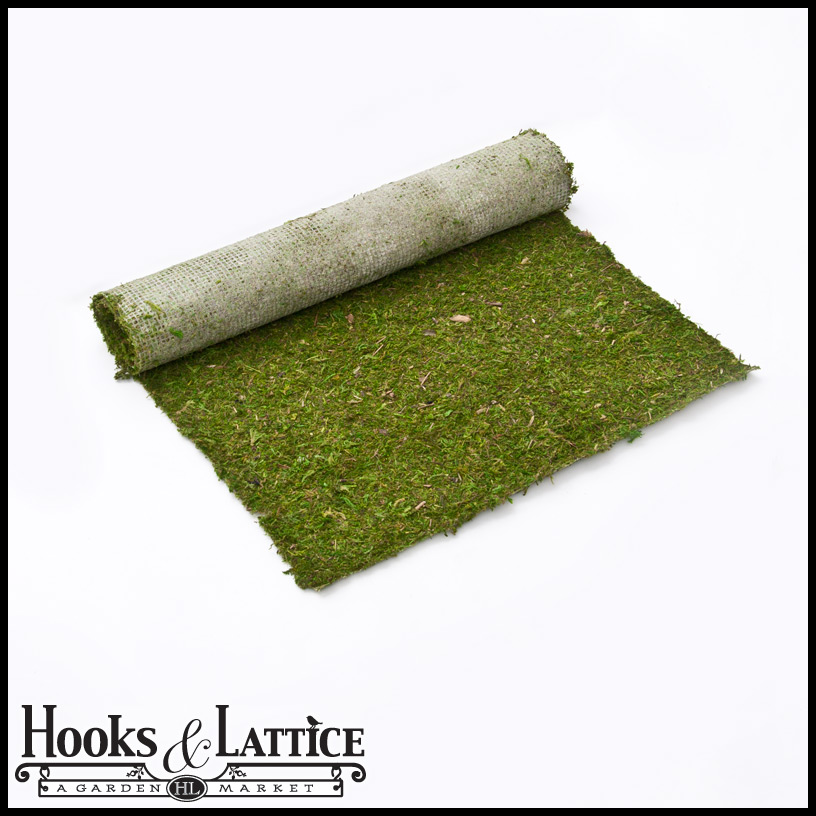 Preserved Moss Sheets For Gardening Amp Crafts Hooks Amp Lattice