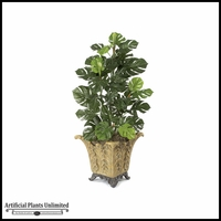 4' Split Leaf Philo - Green | Indoor