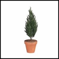 "43""-Outdoor Rated Artificial Cypress"