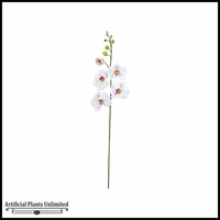 "46"" Phalaenopsis Spray - Cream 