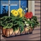 Copper Elegance Window Box