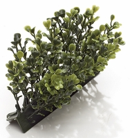 5in.L x 3in. Plush Boxwood Edge - Outoor Polyblend