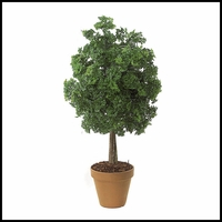 "50"" Outdoor Rated Ming Aralia Bush"