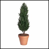 "56"" Outdoor Rated Artificial Cypress"