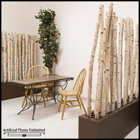 6'L x 6'H Birch Pole Screen in Modern Fiberglass Planter