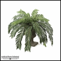 60in. Cycas Palm Cluster - Green|Indoor