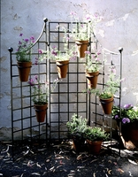 "60""W x 60""H Iron Garden Screen with (6) 8"" Pot Holders"