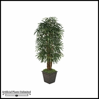 7' Lady Palm Tree - Green | Indoor