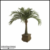 7' Royal Palm - Green | Indoor