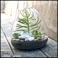 "9"" Small Glass and Stone Terraza Terrarium"