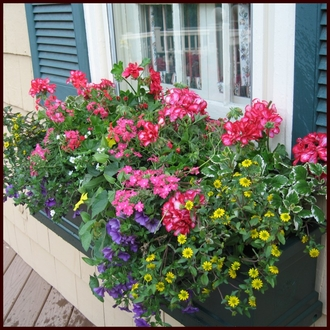 "96"" Grove Green  Supreme Fiberglass Window Box"
