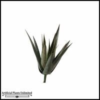 Agave Plant, 14 in.