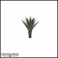 Agave Plant 36in. (2 Colors)