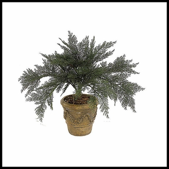 Artificial Ferns & Junipers - Outdoor
