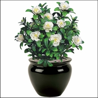 Artificial Flowering Plants - Outdoor