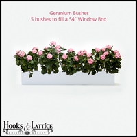 Artificial Geraniums for Window Boxes